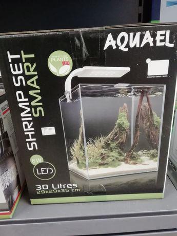 Aquael, krewetkarium zestaw 30 litrów
