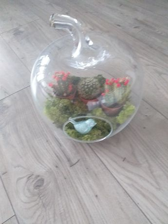 Ozdoba szklana i kaktusy