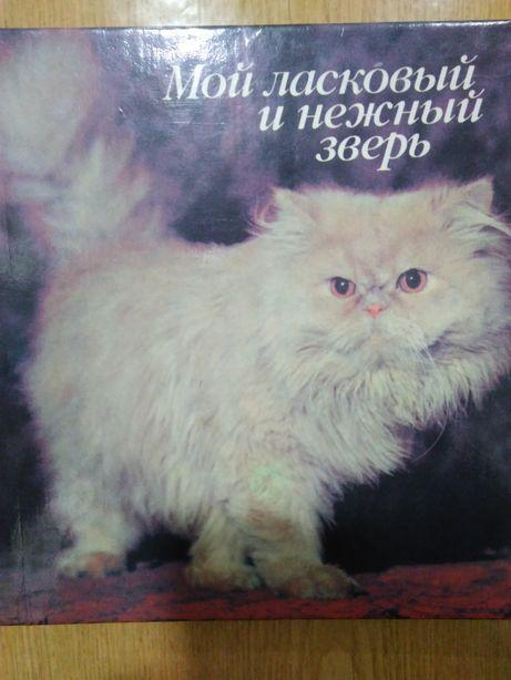 Фотоальбом о кошках