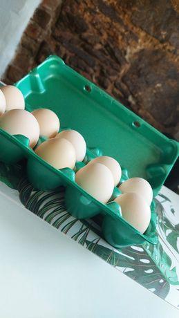 Prawdziwe swojskie jajka