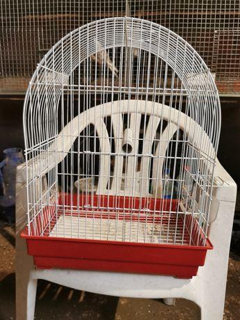 Gaiola para aves de pequeno porte