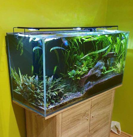 Akwarium 200l kompletne - szkło, filtr, belka LED, grzałka