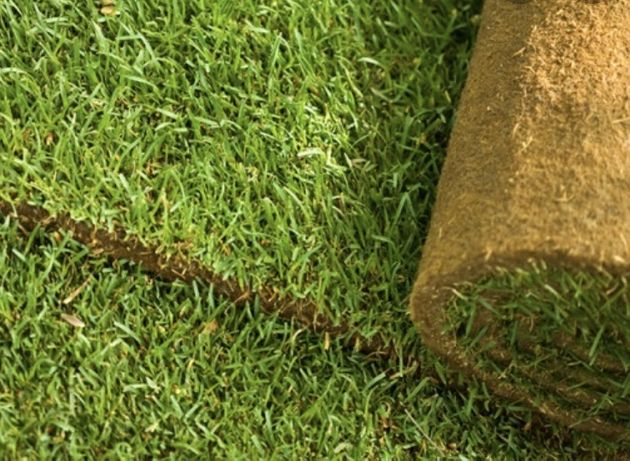 Trawa z rolki, trawnik rolowany - DOSTĘPNA