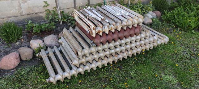 Grzejniki żeliwne - 70 sztuk żeberek