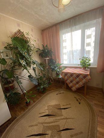 1-кімнатна квартира  (дефіцит), район Сєдова
