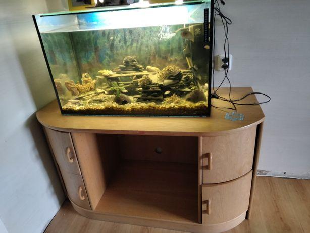 Sprzedam kompletne akwarium z rybkami