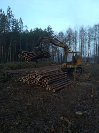 wycinka drzew, karczowanie zrąb odzysk terenów rolnych