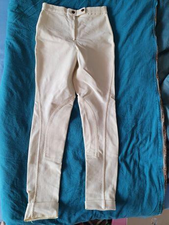 Bryczesy, spodnie do jazdy konnej