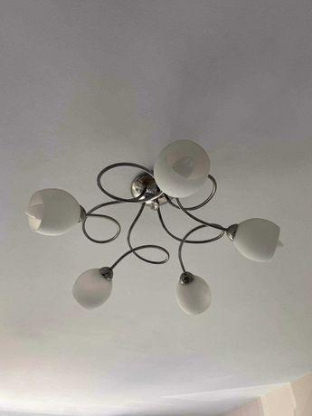 Piękna lampa sufitowa