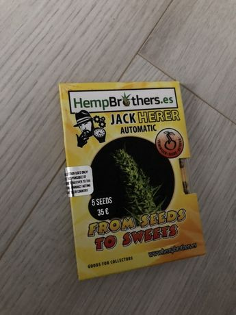 Sprzedam nasiona odmiany Auto Jack Herrer