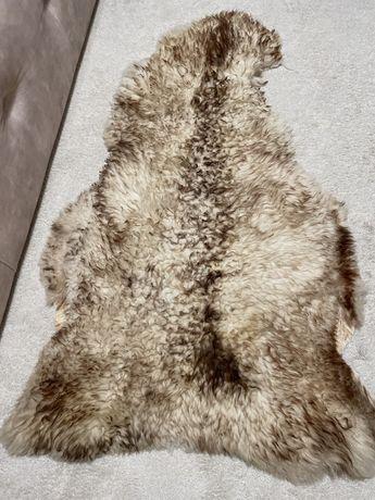 Овечья шкура натуральная из Карпат