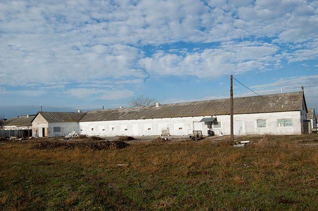 Продам фабрику по выращиванию бройлерных кур