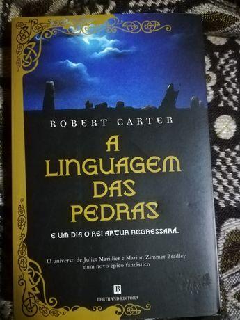 A Linguagem das Pedras, Robert Carter
