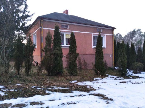 Dom z działką 0.5h w spokojnej okolicy