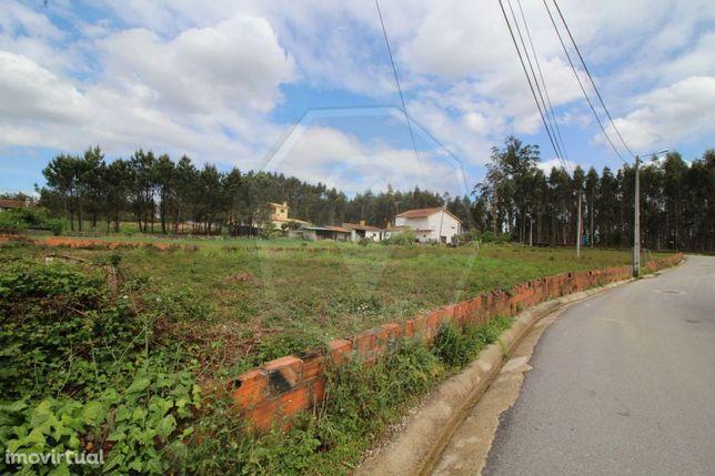 Terreno para construção com duas frentes  Valongo do Vouga
