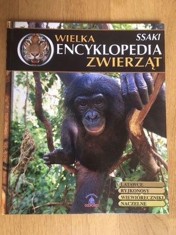 """Książka """"Wielka encyklopedia zwierząt, T.2 - ssaki"""""""