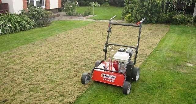 Wertykulacja,renowacja trawnika