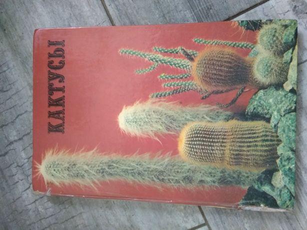Книга Кактусы  с фото.