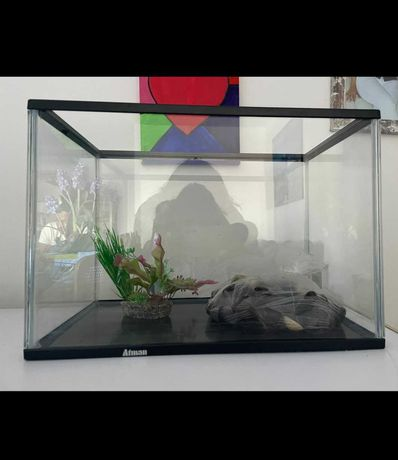 Vendo aquário com pedrinhas e planta artificial