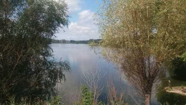 Ділянка над озером в Барахтах.