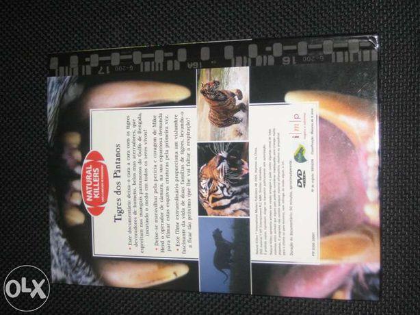 Tigres dos Pântanos, com DVD vídeo