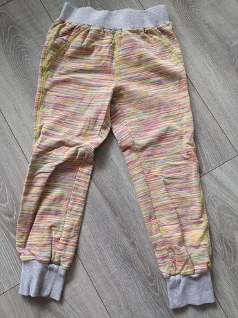 Spodnie dresowe dresiki coccodrillo