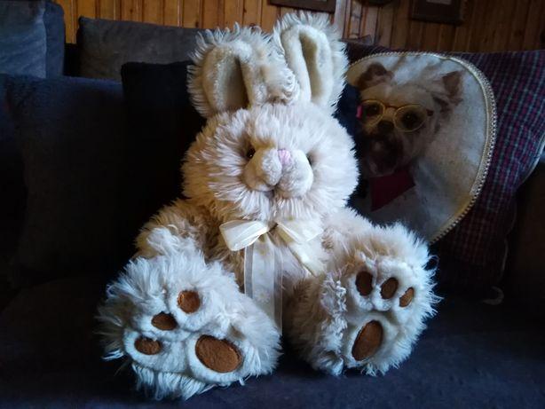 Krolik zajac Wielkanoc