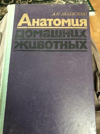 Анатомія домашніх тварин, Каєвський. Ветеринарна медицина. Ветеринарія