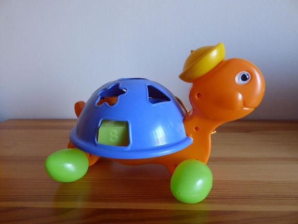 Sorter żółw