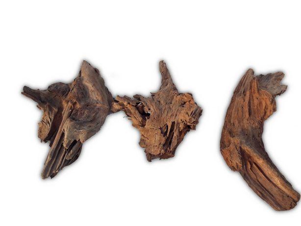 Korzeń MANGROWCA Do Akwarium Rozmiar M 20-30cm KURIER WYSYŁKA