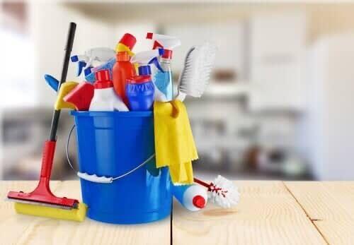 Servicos limpeza domicilio / servicos de engomadoria