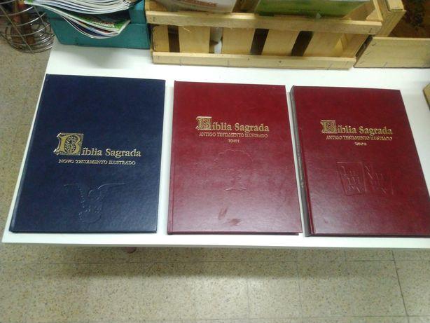 Bíblia ilustrada 3 volumes
