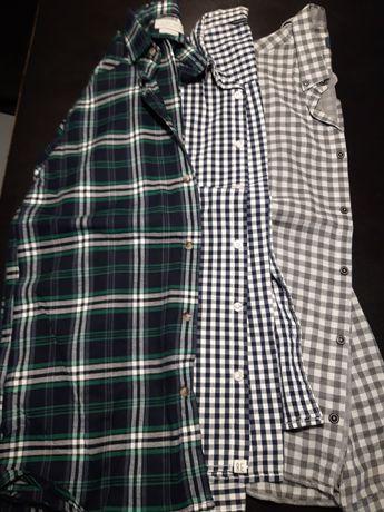 Koszule 3 szt Zara, Reserved  chłopięce /męskie 14-15 lat roz. 170