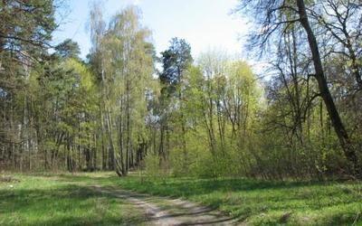 Продам участок земли с. Кучаків (Кучаков, бывш. Кирово)