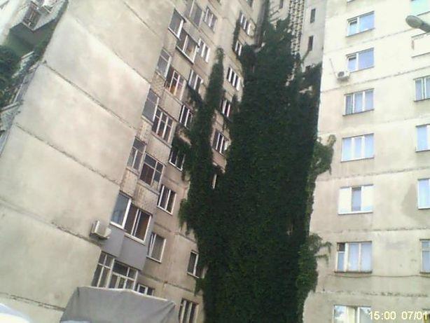 3 комнатная квартира м. Научная