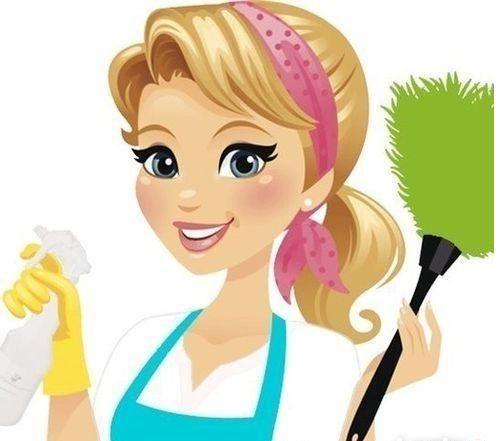 Profesjonalne sprzątanie domów prywatnych/mieszkań/lokali użytkowych