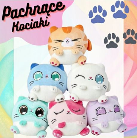 Kitten Catfe pachnący pluszowy kot maskotka kolory
