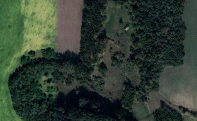 Продаж приватизованої земельної ділянки 2,25 га Грушківка Холодний Яр