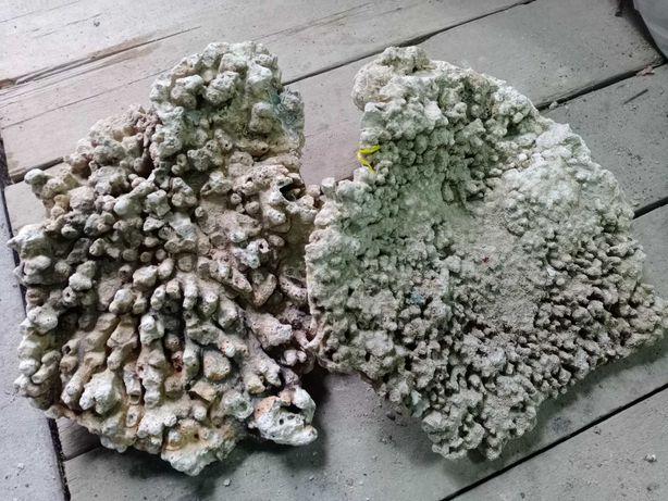 Сухой рифовый камень СРК