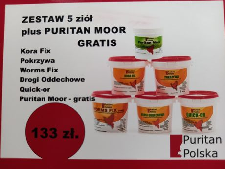 "Zestaw promocyjny złota""5"" +PURITAN MOOR GRATIS"