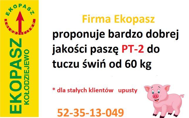 Pełnoporcjowa pasza PT-2 dla tuczu od 60 kg