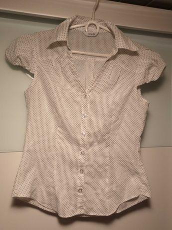 Bluzka koszula groszki george