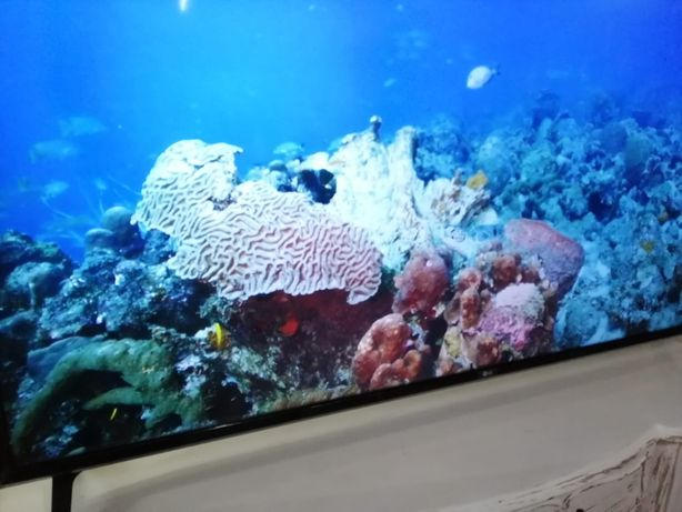 "Televisor LG Led Smart TV 4k 65"""