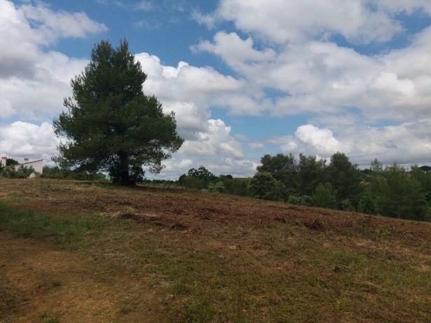 Vende -se Terreno Rústico em Romeira