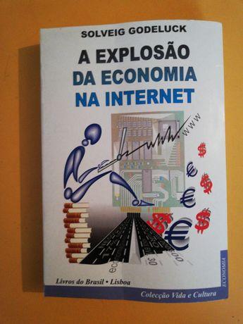 A Explosão da Economia na Internet