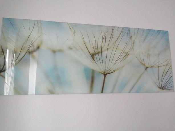Obraz szkło 125cm/50cm