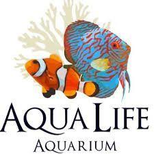 Обслуживание морского аквариума полная гарантия на живое население