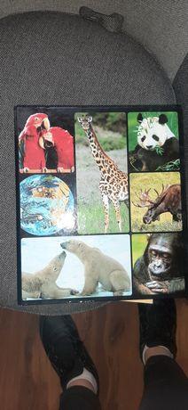 Encyklopedia zwierząt