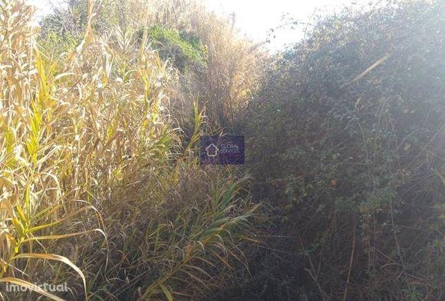 Lote de Terreno a 1 km da Figueira