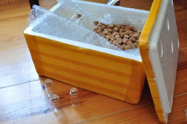Conjunto de 100 mini frascos de vidro tampa de cortiça